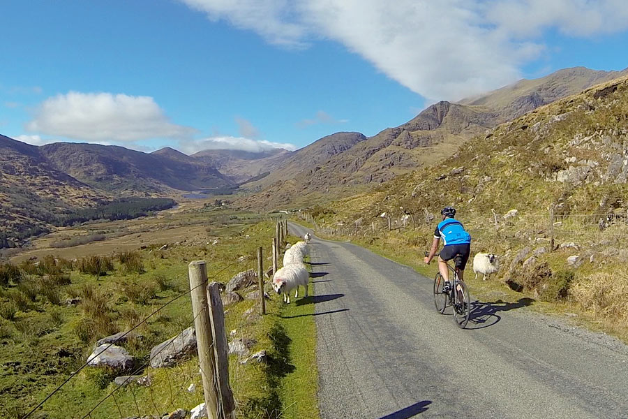 Reeks District cycling